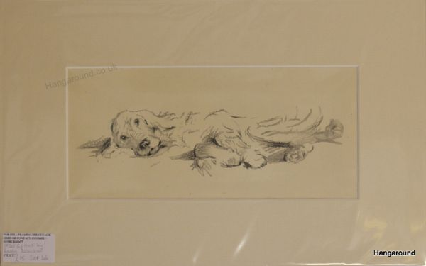 English Setter lying on side 1930's print by Lucy Dawson - Set D6